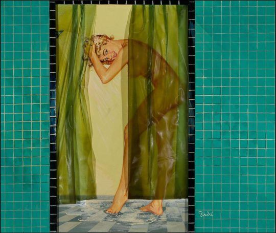 Permalink to Pinup Shower Curtains
